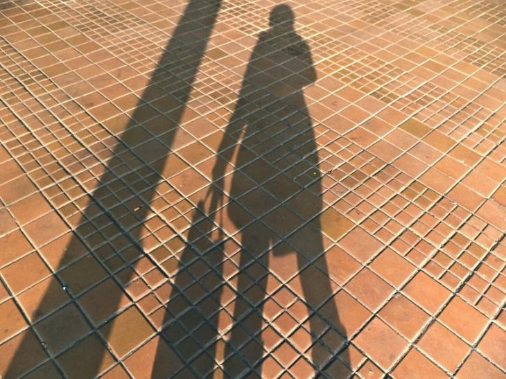 129Shadow