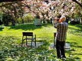 Shooting Magnolias
