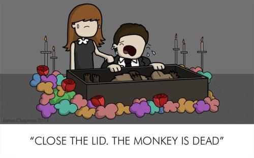 dead-monkey
