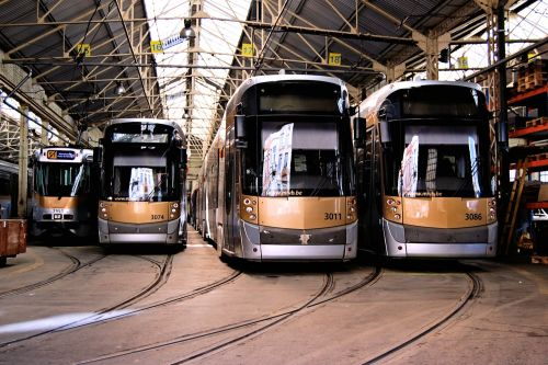 Tram love