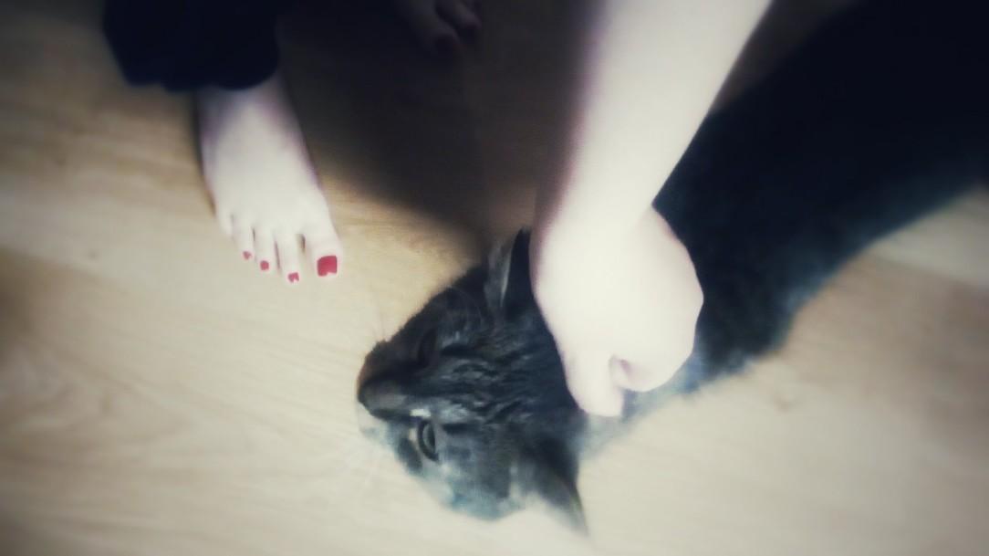 Cuddling the cat