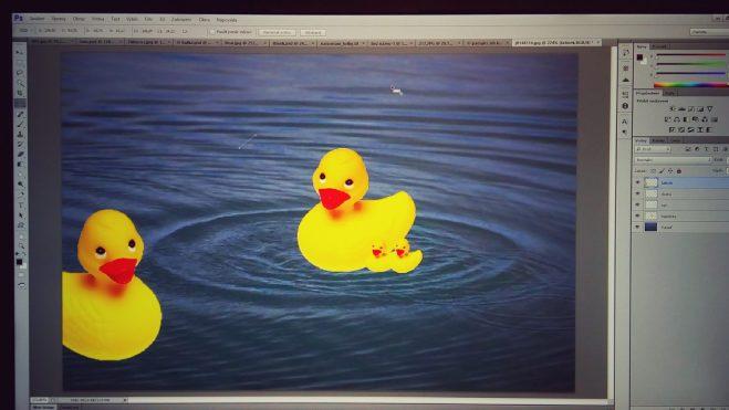 Ducksies