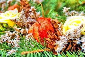 changing-seasons-11-6