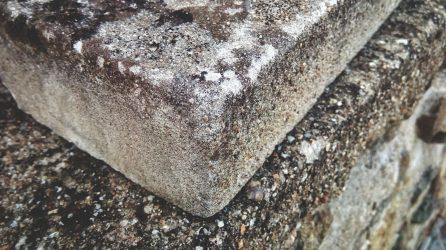 Cement garden