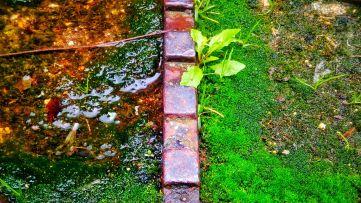 The brick divide