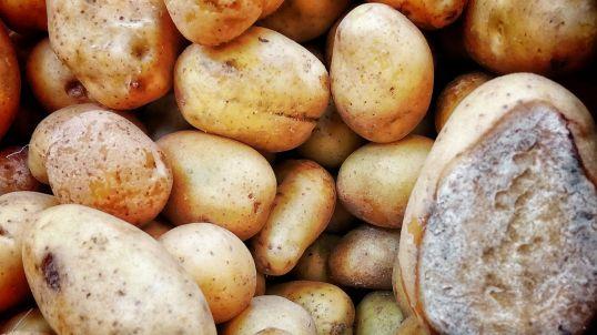 Perfectly good Tesco potatoes